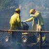 Fire Bans In South Burnett, Gympie