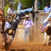 Bell Rodeo Draws Big Crowd