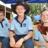 A Taste Of Farming Life At School