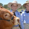 Plenty Of Action At Cooyar Show