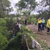 WH&S To Probe Bridge Incident