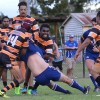 Grand Final Replay Tests Stags