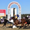 Cup Meeting Produces Thrills And Spills