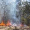 Another<BR> Bushfire At Taromeo
