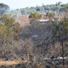 Fire Crews Contain Booie Blaze