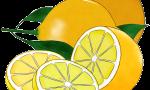 Tarty Lemon