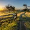 Survey Shows Rural Debt Improvement