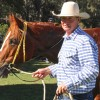 Gympie Gold Proves Elusive
