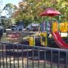 Anger Mounts Over Apex Park