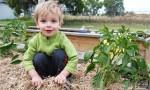 Volunteers Dig In For Community Garden