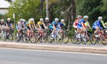 Local Cycle Race On SBS