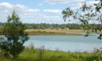 Algae Closes Dam Again