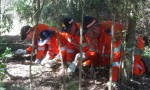 SES Tests Their Skills