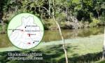 Premier Pinpoints Sites For Dams