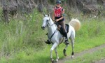 Endurance Riders Head To Cooyar