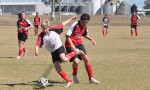 Junior Soccer Results – Round 11