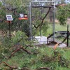 Storms Black Out 10,000 Homes