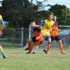 Soccer Sevens Roar Back To Life