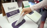 Draws Released For Federal Election