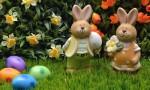 Lions Plan Easter Egg Fun