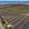 Will Kingaroy Solar Farm Be Next?