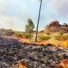 Please Don't Burn Our Poles: Ergon