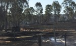 LNP Slams Bushfire Review Results