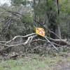 Road Crews Press On Despite Storms