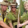 Pine Tree Salutes Anzac Sacrifices