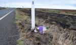 Council To Rehabilitate Crash Site