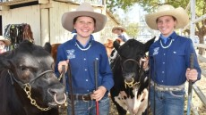 Records Fall At Wondai Show