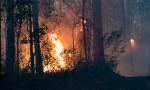 Multiple Fires Still Burning