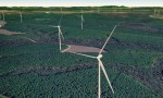 Green Light For $2b Wind Farm