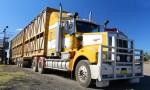 Inquiry Examines Livestock Transport Safety