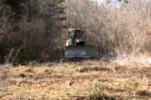 Forestry Field Day Re-Scheduled