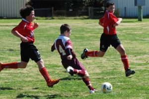 Junior Soccer Results – Round 14