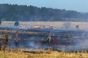 Large Fire In Allies Creek State Forest
