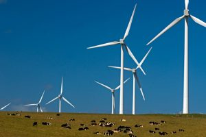 Feedback Sought On Wind Farm Code