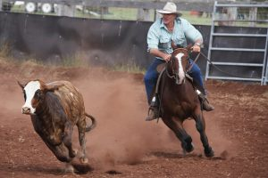 Campdraft Brings Community Together