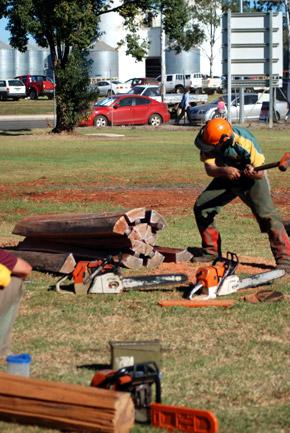 Record-Breaking Kingaroy Show - southburnett.com.au ...
