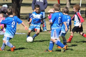 Junior Soccer Results – Round 12