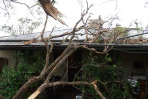 Wild Storm Leaves Corridor Of Damage