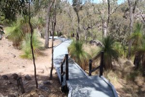 Coomba Falls Boardwalk Back On Track
