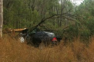 Driver Injured In Highway Crash