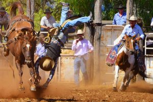 Bell Rodeo Draws Big Crowd
