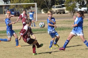 Junior Soccer Results – Round 9