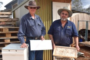 All A-Buzz About Beekeeping
