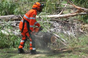 Cutting Edge Training<br> For SES Volunteers