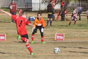 Junior Soccer Results – Round 10