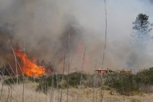 Waterbombers Called To Large Grass Fire